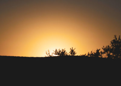 Addo Nationalpark - Sonnenaufgang